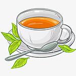 一杯绿茶矢量插画