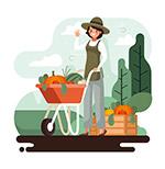 运输蔬菜的妇女