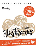蘑菇美食海报