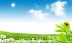 草原自然风光