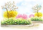 韩式风景春天