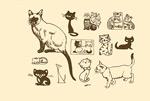 宠物猫剪影