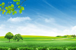 清新自然风景