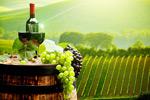 葡萄酒素材图片