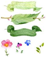 手绘花卉绿叶