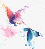 喷溅墨迹水彩蝴蝶