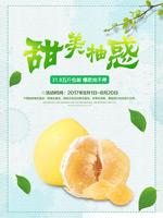 柚子促销海报