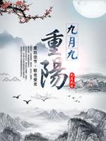 重阳节佳节海报
