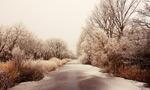 冬季冻结的河