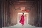 打伞的小和尚
