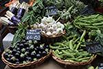 市场里的蔬菜