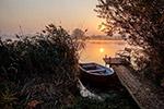 日出田园码头