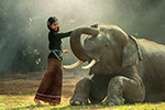 女孩与大象