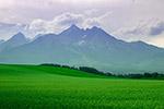 山脉草地风景