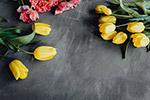 灰色背景花卉