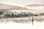 冬天云雾森林