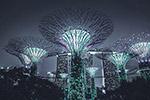 新加坡建筑夜景