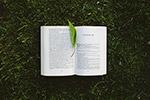 草地上翻开的书