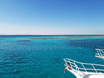 珊瑚礁海景