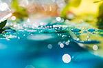 抽象水滴散景