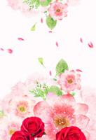 水彩花朵背景