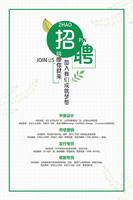 清新绿色招聘海报