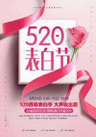 520表白节海报