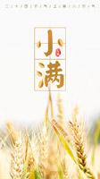 麦子小满节气海报