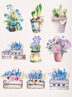 手绘水彩花卉盆