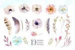 水彩花卉羽毛