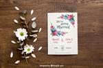 花卉小册子样机