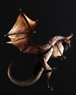 翼��模型