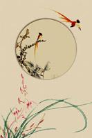 古典小鸟艺术画
