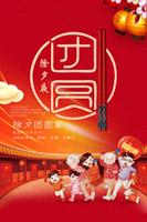 团圆新年海报