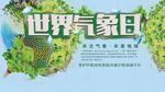 日本wvvw在线中文字幕