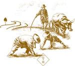 谷雨农民播种插图
