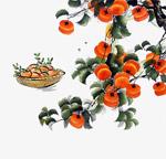 水彩秋季柿子