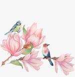 中国风工笔画花鸟