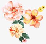 唯美水彩花朵