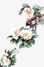 水墨花和小鸟
