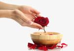 玫瑰精油护理