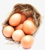 土鸡蛋特写