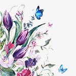 水彩蝶花之恋