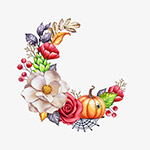 感恩节的南瓜与花