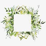 小清新手绘花朵边框