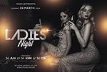 女士之夜酒吧海报