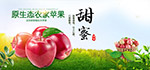 淘宝农家苹果