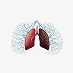 肺部插��