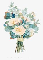 水彩植物花束