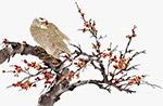 古风彩绘花鸟